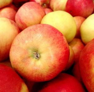 Jablka Idared